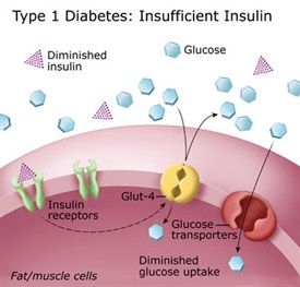insufficient insulin